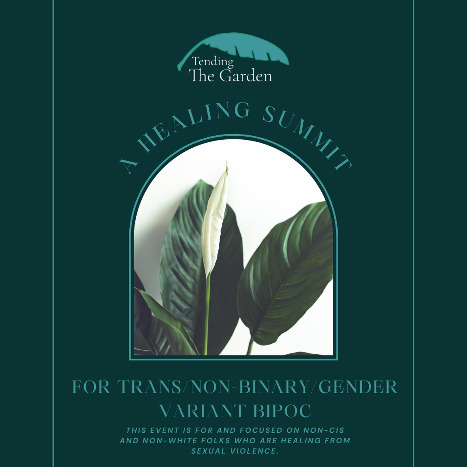 Healing Summit for Trans/Non-Binary/Gender Variant BIPOC